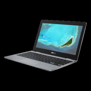Asus ChromeBook C223NA-GJ0091